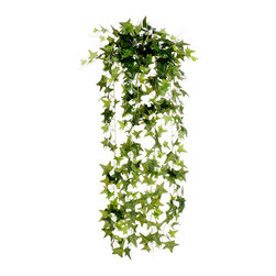 Silk Plants Direct - Silk Plants Direct Ivy Hanging Plant (Pack of 12) - Silk Plants Direct specializes in manufacturing, design and supply of the most life-like, premium quality artificial plants, trees, flowers, arrangements, topiaries and containers for home, office and commercial use. Our Ivy Hanging Plant includes the following: