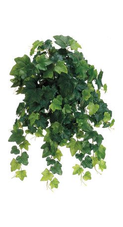 Silk Plants Direct - Silk Plants Direct English Ivy Vine Hanging Plant (Pack of 6) - Green - Silk Plants Direct specializes in manufacturing, design and supply of the most life-like, premium quality artificial plants, trees, flowers, arrangements, topiaries and containers for home, office and commercial use. Our English Ivy Vine Hanging Plant includes the following: