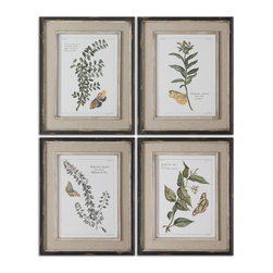 Uttermost - Butterfly Plants Framed Art, Set of 4 - Create a butterfly garden at home with these botanical plant prints. The set features renderings of four different plants that attract butterflies in nature. You may find that you keep wandering back to gaze upon the set — their distressed black frames and faux linen mattes make them as attractive to people as butterflies are to the plants.