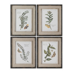 Butterfly Plants Framed Art, Set of 4