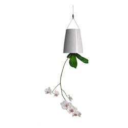 Boskke - Boskke Sky Planter Ceramic - With this eye-catching planter, gardening goes from the earth to the sky. You get the opportunity to hang ordinary houseplants in an extraordinary way, allowing you and other admirers to really focus on the flora.