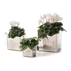 Mirror Orchid Pot Set, Plain Silver - For your most delicate blooms. Create a distinctive presentation that brings glamour to a table or armoire. The Mirror Orchid Pot Set in Silver provides for a most vivid reflection of verdant greens and colorful florals. The mirrored containers convey a soft silver-grey hue. A rich silver trim delineates the simple, clean outlines of the small, medium, and large cube planters.