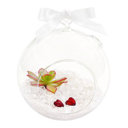 luludi living art - Pure of Heart Terrarium - Our zen inspired pure of heart terrarium inspires a sense of loving serenity. Each ornament contains two red hearts and a mini succulent atop a bed of white pebbles inside a glass globe. A versatile design piece. It comes with both a decorative ribbon and flat bottomed globe for hanging or tabletop display.