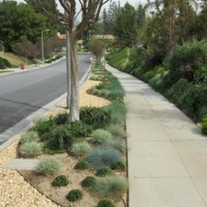 Contemporary Landscape by Pasadena Water and Power