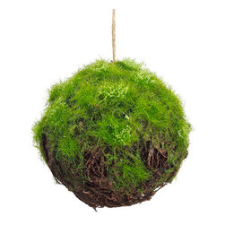 Silk Plants Direct - Silk Plants Direct Moss Twig Ball (Pack of 12) - Pack of 12. Silk Plants Direct specializes in manufacturing, design and supply of the most life-like, premium quality artificial plants, trees, flowers, arrangements, topiaries and containers for home, office and commercial use. Our Moss Twig Ball includes the following: