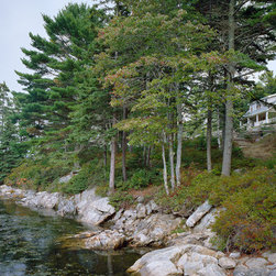 Cameron Point Cottage -