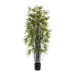 Nearly Natural - 60 in. Silk Bamboo Tree - Includes tree pot. 13 black trunks. Nearly 750 leaves. Jet black trunk. Bold green leave. Astonishing reproduction captures the handsome elegance of the black bamboo. Offers it up for decorating pleasure. Looking fresh for year without water or sun. Made from silk. Green color. Tree pot: 6.75 in. Dia. x 6 in. H. Overall: 31.5 in. W x 31.5 in. D x 60 in. H
