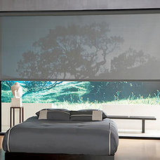 Eclectic Roller Shades by Great Lakes Window Coverings