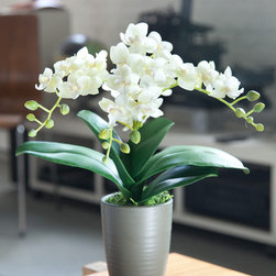 Silk Orchid Arrangement Grace - This simple and elegant silk orchid arrangement is a great addition to smaller spaces and quiet corners of the interior.