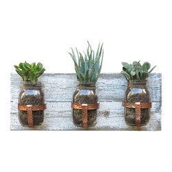 Wayne Works - Mason Jar Planter with White Distressed Wood Backing - Make a statement with this wall mounted mason jar planter. These are great for succulents, flameless tea lights or growing an indoor herb garden where space is limited.