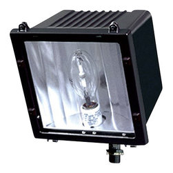 Eurofase Lighting - Eurofase Lighting 23259 Architectural Flood Light - Reliable and convenient, this flood light is a smart solution for your needs. Eurofase Lighting is one of the few companies that still employs artisans capable of creating this rugged flood light featuring incandescent or fluorescent bulbs.Features: