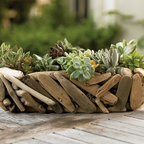 """Viva Terra - Driftwood Succulent Garden (round) - We've paired two rugged natural survivors of wind and storm-succulents and driftwood- and given them safe harbor in a compact indoor garden that is easy to grow and even easier to enjoy. Surf and sand-smoothed Oregon coast driftwood forms a compact, rustic exterior for our handcrafted planters. Hardy, low maintenance and eco-friendly succulents thrive for many months when watered no more than every six to eight weeks. 15""""L x 5""""H"""