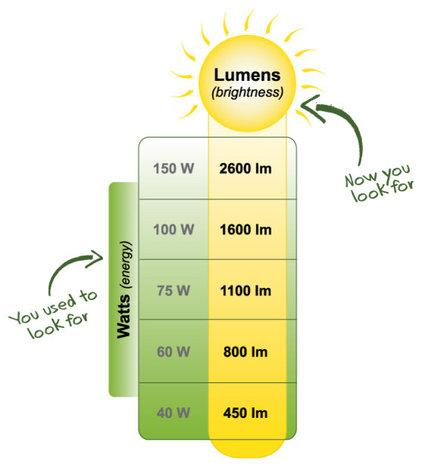 Light Bulbs by EnvironmentalLights.com
