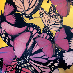 "Phyllis Morris - Chanteuse Wallpaper, Pink - A butterfly is like a flying flower, it has been said. And we agree! This bold design features large-scaled butterflies (the largest being 24"" wide) printed on heavyweight matte Mylar. It is printed at ""double width"" of 46"" with a vertical repeat of 70.5"" and is sold by the running yard with a 3-yard minimum. Choice of three colorways and two grounds: brushed metallic gold or brushed metallic nickel. Printed in the USA."