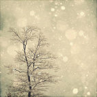 Snow Bokeh Tree Wall Art by Marianne LoMonaco Photography - I tend to switch out artwork around my home based on the season, and this photo is just magical. It puts me in the mood for fireside hot chocolate, and it would look great framed on the mantle or mixed in with other wall art.