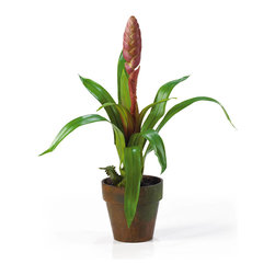 Nearly Natural - Potted Single Sword Bromeliad Silk Flower Arrangement - Step into tropical paradise when you bring this potted single sword bromeliad silk plant into your home. This unique bromeliad is one of a kind and will grab the attention of anyone who crosses its path. It comes in 2 eye catching colors: mauve and red. It stands 21.5' tall comes in a decorative pot with matted soil. Color: Mauve, Height: 21.5'.