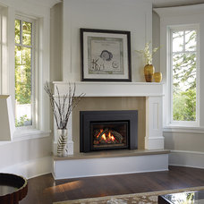 Traditional Fireplaces by Regency Fireplace Products