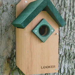 Songbird Essentials - Bluebird House Green Roof - Easy open for monitoring and cleaning. Ventilation and drainage holes. Predrilled mounting holes. Outside Predator guard. 1 1/2 inch entrance hole.