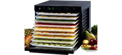 Contemporary Dehydrators by Fern's Nutrition
