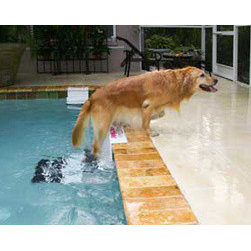 Paws Aboard - PoolPup Ladder - The PoolPup steps work with both in-ground and above-ground poolsand will not damage your vinyl liners. A convenient way for your swimming dog to get out of the water easily and an excellent safety device while you're away from the pool. Two convenient sizes for both large and small dogs!