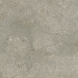 """marblesystems - Olive Green Honed Limestone Tiles 4"""" x 4"""" x 3/8"""" - Natural limestone tile."""