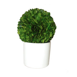 Small Boxwood Topiary - A topiary is a great alternative to cut flowers. They last longer, and your hostess won't have to scramble for a vase.