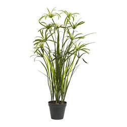 3' Papyrus Silk Plant - The Papyrus Plant, once used to create paper long ago, can now be used to decorate your home or office. This regal and interesting-to-examine plant stands 3 feet high, with beautiful drooping leaves at the end. This ancient plant makes for a great entryway accent (especially with one on each side). Comes with a flower pot and faux soil for maintenance free enjoyment forever. Height= 36 in x Width= 20 in x Depth= 20 in