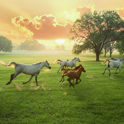 Murals Your Way - Arabian Horses And The Rising Sun Wall Art - Under a lovely peach and pink sky, white horses and brown foals run across a green lawn
