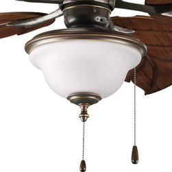 Progress Lighting - Progress Lighting P2636-20 Ashmore 2-Lt. Outdoor Ceiling Fan - Two-light Indoor/Outdoor fan light kit with frosted seeded glass. Universal style.
