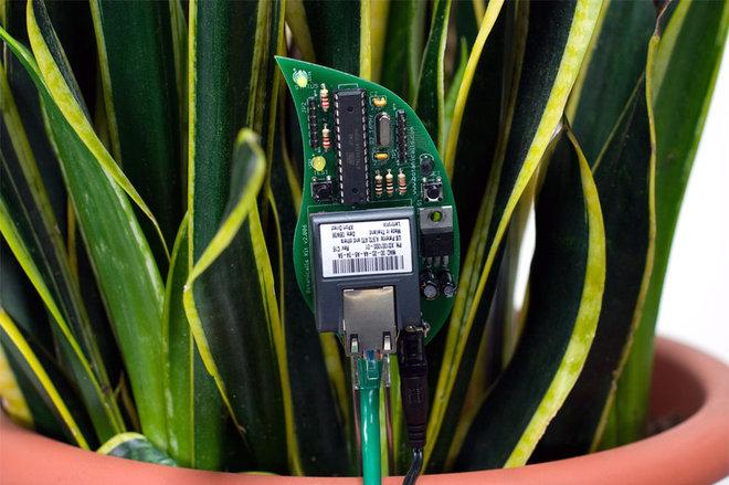 Home Electronics Botanicalls Plant Monitor