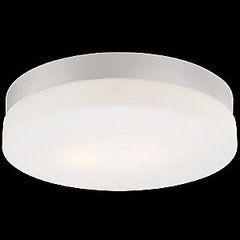 Disc Ceiling/Wall Light by Alico at Lumens.com