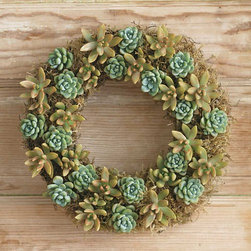 "Viva Terra - Mixed Green Succulent Wreath - Our living wreath is as eco-friendly asit is enchanting. The succulents arehand-assembled and include crassia, lichenand other compatible varieties that thrivewith minimal watering every six to eightweeks. WREATH 13""DIAM, HANGER 13""L"