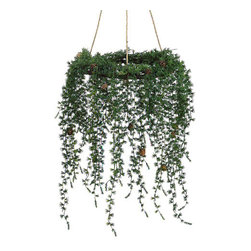 Silk Plants Direct - Silk Plants Direct Pine and Cone Hanging Wreath (Pack of 2) - Silk Plants Direct specializes in manufacturing, design and supply of the most life-like, premium quality artificial plants, trees, flowers, arrangements, topiaries and containers for home, office and commercial use. Our Pine and Cone Hanging Wreath includes the following: