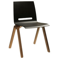 Modern Dining Chairs by Elte