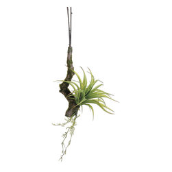 Silk Plants Direct - Silk Plants Direct Tillandsia Hanging Branch (Pack of 12) - Green - Silk Plants Direct specializes in manufacturing, design and supply of the most life-like, premium quality artificial plants, trees, flowers, arrangements, topiaries and containers for home, office and commercial use. Our Tillandsia Hanging Branch includes the following: