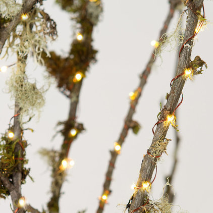 Contemporary Holiday Lighting by Terrain