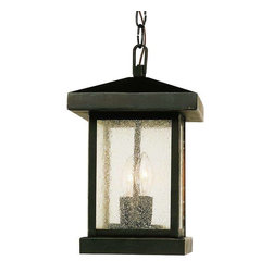 Trans Globe Lighting - Trans Globe Lighting 45643 WB Outdoor Hanging Light In Weathered Bronze - Part Number: 45643 WB