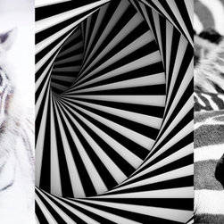 "Home Decor - Optical Panoramic Wall Decals - Optical black and white wall art, creating a contemporary illusion in 3 peel and stick panels. Inspired by wildlife, this panoramic depicts a zebra, and a tiger, separated by a modern illusion of stripes. This Panoramic decal kit comes with three 18.5"" x 26.75"" pieces and assembles to 55.5"" x 26.75"". Imported from Italy"