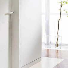 Contemporary Interior Doors by Fenstermann LLC