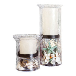 Sea/Ocean Hurricane Candle Centerpiece-Kitira - If you happen to love absolutely everything about the ocean, seashore and coastal tide pools; there is no doubt that you will love this Seashell Candle Centerpiece. Designed to remind you of the sea, we have paired hammered glass hurricanes filled with assorted seashells and aqua starfish. An elegant gunmetal tray separates the shells from the renown Vance Kitira designer candles that work with any room.