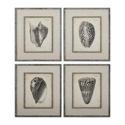 Uttermost - Uttermost Vintage Diderot Shells Art Set/4 - 51088 - Uttermost Vintage Diderot Shells Art Set/4 - 51088