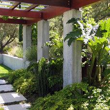 Modern Landscape by Suzman Design Associates