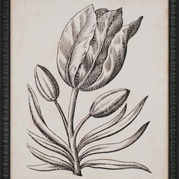 Paragon Decor - Distinguished Floral I Artwork - A single sepia-toned tulip makes a truly distinguished statement.