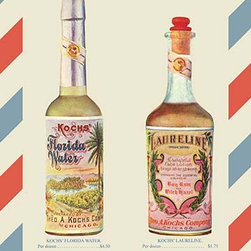"Buyenlarge.com, Inc. - Koch's Florida Water and Laureline Face Lotion- Gallery Wrapped Canvas art 12"" x - Manufacturers could not take all their products around the country so they made catalogs for the salesmen to carry with them.  This image is one page of a catalog of barbershop supplies dating from 1899."