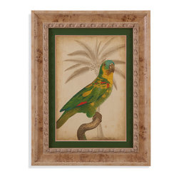 Bassett Mirror - Bassett Mirror Framed Under Glass Art, Parrot and Palm II - Part II of the Parrot and Palm series, this tropical-style print features bright and proud parrot perched upon a branch. Framed under glass in a beautiful 3-inch cream-colored wood frame, this piece's bright reds, yellows, and greens against the background's soft tan Palm sketch will add a striking feature to almost any room in your home