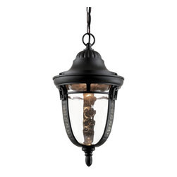 """Trans Globe Lighting - Trans Globe Lighting 40224 ROB Braided Roman 16"""" Outdoor Pendant - Capture Grecian, Roman, or French decor elements with this decorative outdoor collection showing braided glass frame, feather detail, and leaf motifs. Clear water glass blends smooth shadows across landscape and garden areas."""