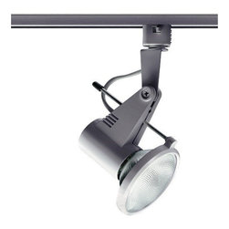Juno Lighting - Trac-Master T218 PAR30 Delta 200 Track Light, T218sl - The Delta 200 Series attains the ultimate caliber of clean lines in today's popular open fixture look. The die-cast aluminum exterior features the detailed styling of a precision lighting instrument with a sleek vented look.