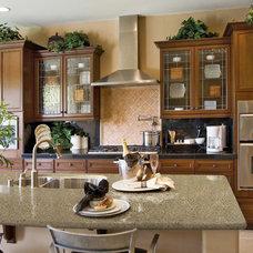 Traditional Kitchen Countertops by Seifer Kitchen Design Center