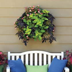 Living Walls Projects - Living Wall Planters are a side planting system that can be hung alone or in multiples. These affordable 14″ square planters group together seamlessly, creating a dramatic floral presentation that fits any size area.