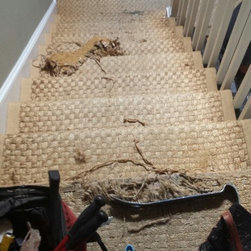 Residential remodel - Beverly Hills - Existing carpet second floor